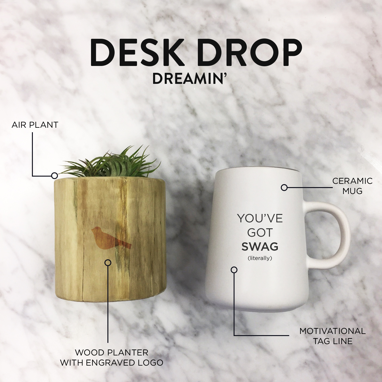 Desk Drop with mug and air plant