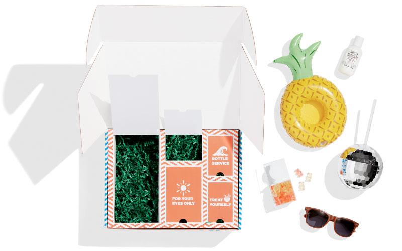 Surprise Invite Gift Kit Mailer